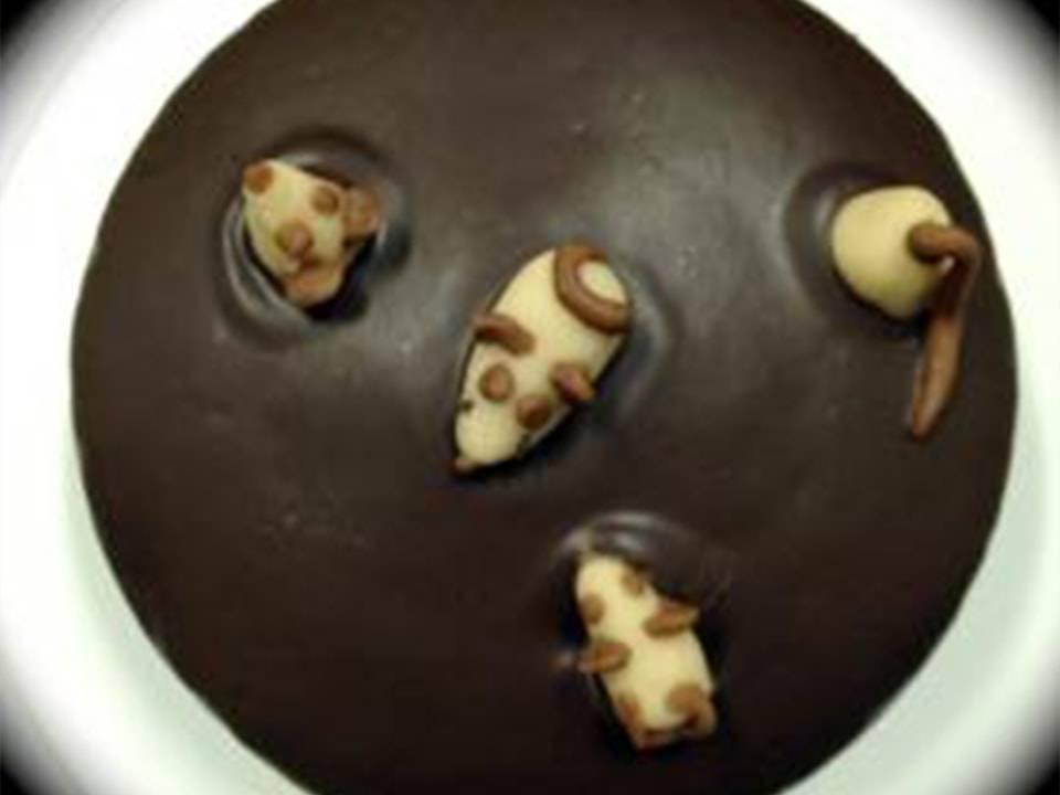 Recetas FussionCook: Naranja Y cobertura de chocolate.